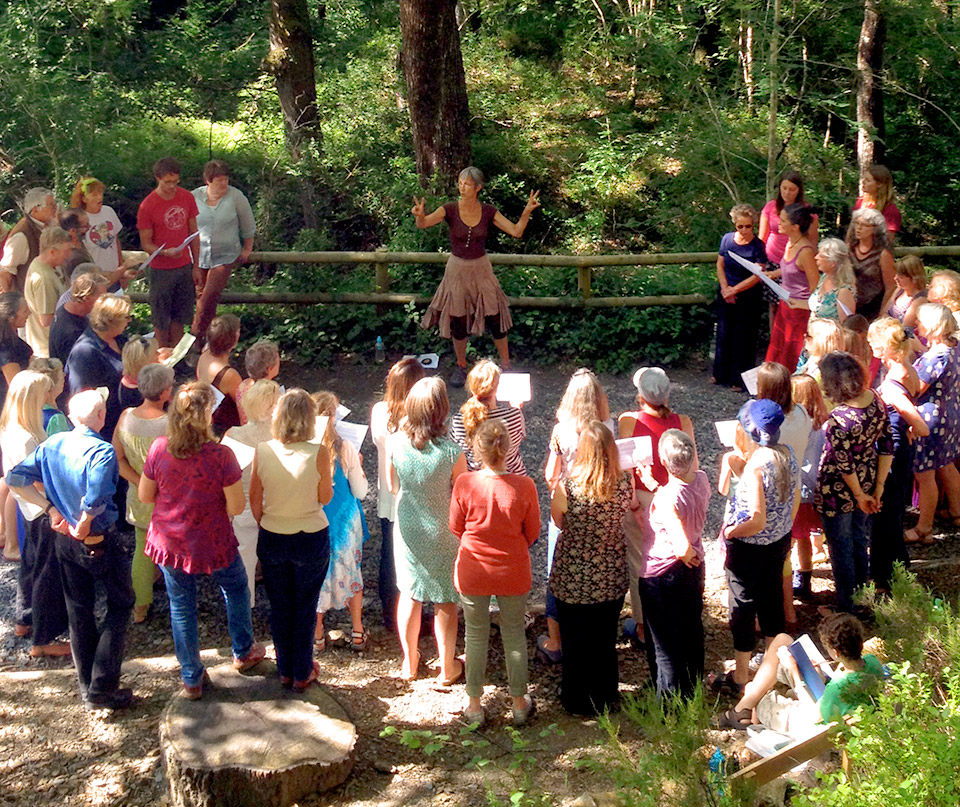 Dartmoor Harmony Gathering, Woodland Centre, July 2014